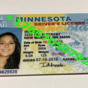 MINNESOTA ID (Drivers License)
