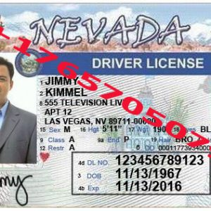 NEVADA ID (Drivers License)