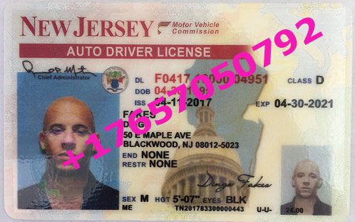 NEW JERSEY ID (Drivers License)