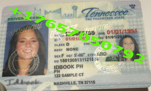 TENNESSEE ID (Drivers License)